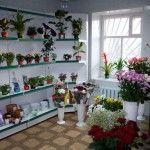 flowersshoptonshaevo2