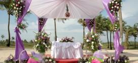 Бизнес-идея – организация свадебных торжеств
