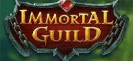 Immortal Guild: структура и особенности игры